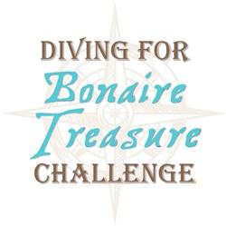 bonaire_treasure