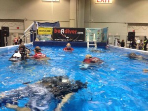DEMA 2013 Be a Diver Pool