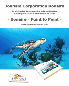 Bonaire to Point